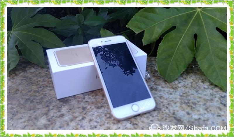 iphone7 (11).jpg