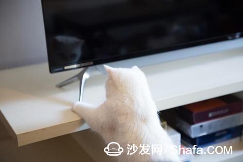 新煌彩超窄边夏普电视,私定颜值+观影双享高品质