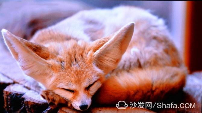 f90e890d3dc1672a_副本.jpg