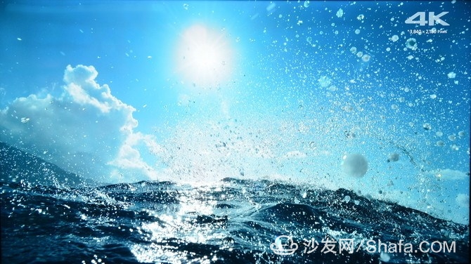 cbdce53d9a62d86c_副本.jpg