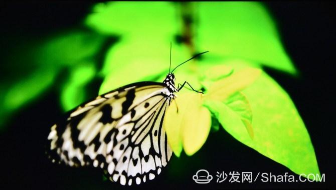 f49edf9679f98**_副本.jpg