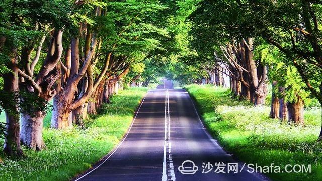 15289296145288be1d1ec78_副本.jpg