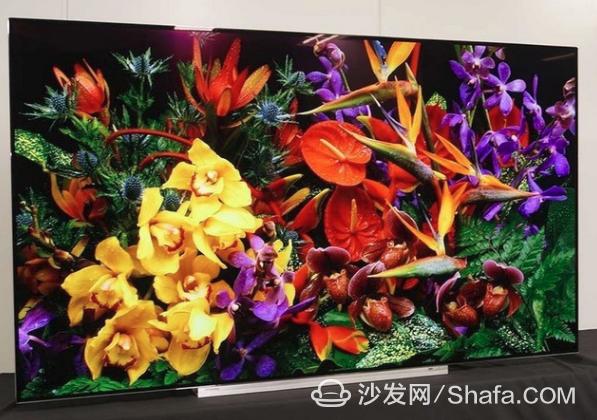 海信或将于年底推出旗下首款OLED电视